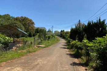 (2 tỷ 9) - Gia đình cần bán 1600m2 đất chuyển đổi xây dựng tại xã Xuân Trường, Đà Lạt. 0936.905.939