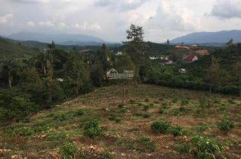 Bán đất nghỉ dưỡng mặt đường nhựa 7000m2, view đẹp TP Bảo Lộc