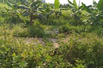 Ông bác nhờ bán hộ lô đất chung cư Đồng Hải, gần chợ Quán Toan, 680 triệu