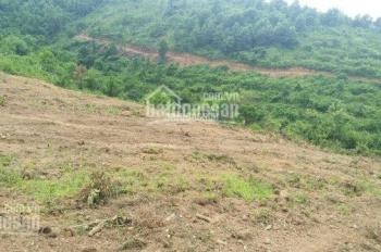 Bán lô đất siêu phẩm làm khu nghỉ dưỡng cao cấp, nhà vườn với DT 4000m2, cách Quốc Lộ 6 2,5km