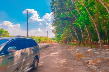 Bán đất giá rẻ vị trí đẹp ngay trung tâm Phú Giáo Bình Dương, 300m2, trả góp chỉ 2,5tr/tháng