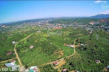 4.200m2 (có 10m mặt tiền) đường Ỷ Lan, Đại Lào, TP Bảo Lộc, Lâm Đồng. (Cách Quốc Lộ 20 chỉ 1km)