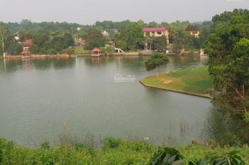 Cần bán đất thổ cư tại xã Nhuận Trạch huyện Lương Sơn diện tích 3160m2 giá 4 tỷ có thỏa thuận