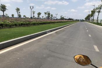 Chính chủ cần bán gấp lô đất tại khu dân cư D2D.P,Thống Nhất,TP Biên Hòa.sổ hồng riêng.  0706084550