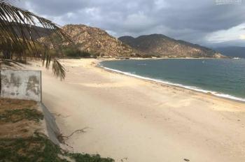 Đất mặt tiền biển Trần Lê, Phan Thiết, xây resort, nhà hàng, cafe chỉ với 5,5tr/m2 đón đầu cao tốc