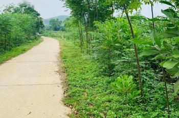 Cần bán nhanh 2800m2 đất thổ cư tại Lương Sơn, Hòa Bình