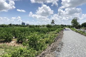 Cần bán 2245m2 đất vườn có sẵn 210m2 đất thổ, view kênh, giáp mặt tiền sông Vàm Cỏ
