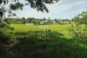Cần chuyển nhượng lô đất 1440m2 có tường bao xung quanh giá rẻ tại Hòa Sơn, Lương Sơn, HB