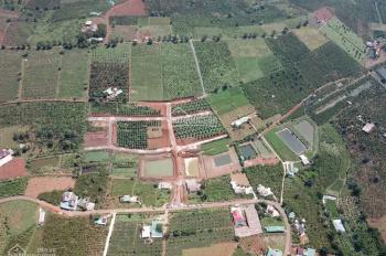 Đất Bình Thuận chỉ có 60 nghìn/m2 sổ hồng từng lô, công chứng ngay trong tuần tặng 3 - 30 chỉ vàng