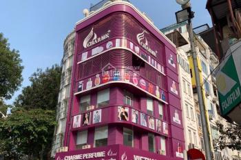 Chính chủ cần bán nhà lô góc 2 mặt tiền phố Tràng Thi - Hoàn Kiếm - HN DT 50m2 - MT 5,19m và 9.5m