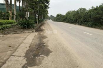 Nhà xưởng mặt đường Đại lộ Thăng Long Hà Nội 5000m2