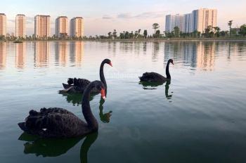 Chuyên mua bán, kí gửi đất liền kề biệt thự khu đô thị Thanh Hà Cienco 5. LH: 0988606750