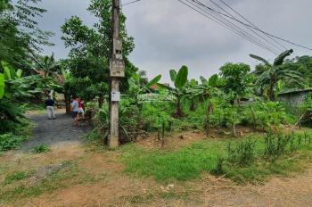 Cần bán đất thổ cư diện tích 1551m2, giá 850 triệu tại Lương Sơn