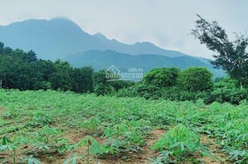 Cần bán gấp lô đất 1800m2 tại xã Vân Hòa, Ba Vì, Hà Nội. LH 0862189768