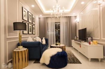 Chuyên cho thuê 1PN đến 3PN căn hộ Everrich Infinity, full nội thất giá chỉ 9 tr/th. LH 0906741618