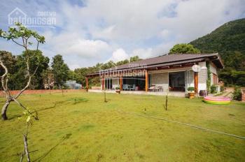 Chính chủ bán gấp lô đất 3000m2, hẻm xe tải, gần Hùng Vương và KCN Nhơn Trạch