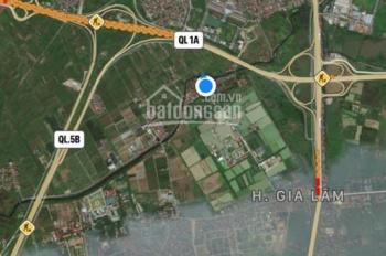Chủ vỡ nợ 38m2 nhà lô góc kinh doanh đường 7m trục chính An Lạc, Trâu Quỳ, ĐH Nông Nghiệp, 1,75 tỷ
