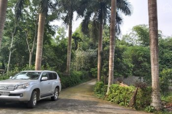 Bán gấp biệt thự tuyệt đẹp tại Lương Sơn