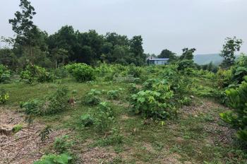 Nhượng 5000m2 đất trang trại nhà vườn, view cao thoáng đẹp gần Vịt Cổ Xanh  Lương Sơn, Hòa Bình.