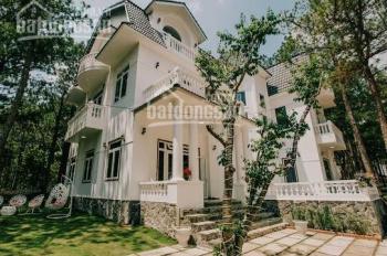 Bán biệt thự siêu đẹp 1.500m2, đã có thương hiệu tại khu vực hồ Tuyền Lâm