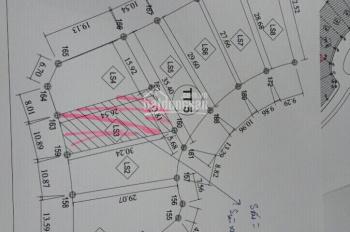 Bán gấp biệt thự song lập DT 342m2 dãy TT5 khu đô thị mới Nam An Khánh Sudico. Tổng DTXD 350m2