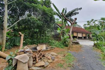 Bán đất thổ cư giá siêu rẻ tại Lương Sơn Hòa Bình có diện tích 1.551m2
