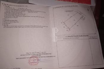 Bán đất CLN 8641m2 trồng bơ Bảo Bình, Cẩm Mỹ, giá 500tr/sào