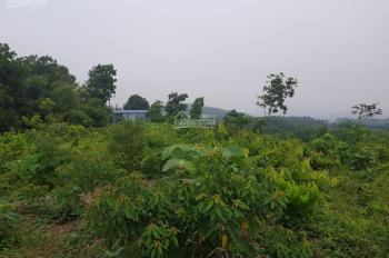 Cần chuyển nhượng lô đất tại Liên Sơn Lương Sơn Hòa Bình DT 1046m2 có 300m2 đất ở vị trí đất thoáng