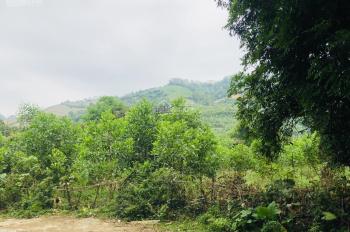 Đất rộng, giá tốt, nhiều ưu đãi cho lô đất Liên Sơn, Lương Sơn, Hòa Bình