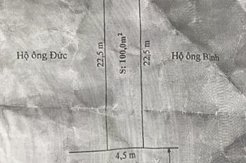 Bán lô đất 100m2 mặt đường 208 - Quốc Lộ 17B tại xã An Đồng