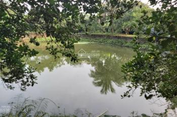 Biệt thự ở ngay 4000m ở Lương Sơn giá chỉ hơn 5 tỷ. LH 0948.035.862