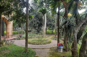 Khuôn viên biệt thự ở ngay Lương Sơn Hòa Bình 4000m2