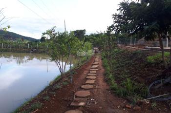 Bán nhanh lô đất trang trại Tà Nung, Đà Lạt