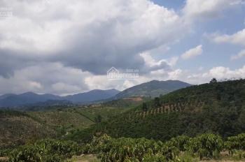 Bán vườn view đẹp ngay trung tâm xã Lộc Thành. Cách Quốc Lộ 55 khoảng 1km