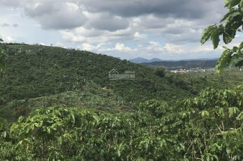 Bán nhà vườn view đồi núi cách Quốc Lộ 55 gần 1,5km