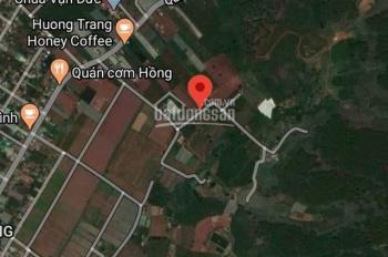 Bán 2,1 hecta nhà đất cách đường Quang Trung 100m - Tà Nùng, TP. Đà Lạt