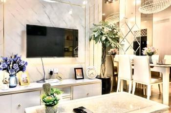Cập nhật quỹ căn hộ chuyển nhượng tại Times City - Park Hill - Premium tháng 5/2020
