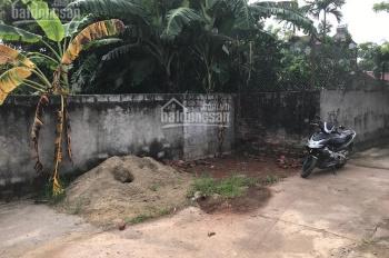 Bán đấu giá BĐS tại thôn 2, Xã Vạn Phúc, Huyện Thanh Trì, thành phố Hà Nội