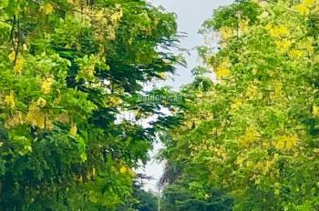 Chính chủ cần sang nhượng căn nhà vườn 136m2 Hà Nội Diện tích 133m2 mặt tiền 6m, hướng Đông Nam