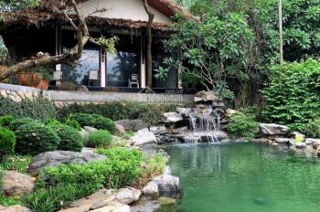 Bán khuôn viên biệt thự nghỉ dưỡng 6000m2 gần trung tâm Lương Sơn