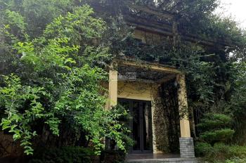 Bán gấp BT VIP tại Hòa Sơn Lương Sơn 4000m2 khuôn viên hoàn chỉnh chủ để lại toàn bộ nội thất trong