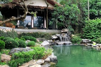 Cần bán DT 6000m2 biệt thự nhà vườn đẹp nhất Lương Sơn
