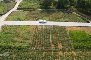 Đất Bình Yên sổ đỏ vĩnh vễn nhỉnh 900 triệu mua bảo vật truyền đời sinh lời bền vững - 097125 4586
