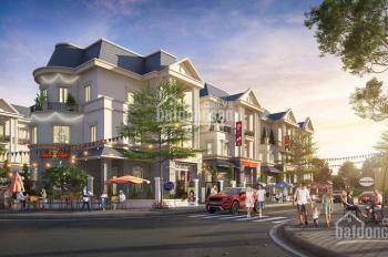 Chính chủ bán gấp biệt thự 210 m2 tại Mipec Kiến Hưng, giá cực rẻ