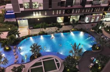 Không đăng ảo cho thuê căn hộ Him Lam Phú An có nội thất cơ bản giá 7,5tr/1 tháng, LH: 0793033933