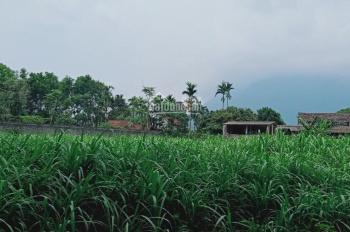 Bán lô đất nghỉ dưỡng DT 1575m2 trong đó có 200m2 là đất ở