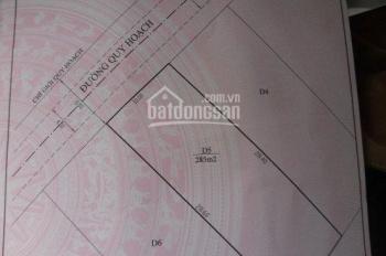Bán lô đất 10x28.5m đường Nguyễn Hữu Cầu - P12 - Đà Lạt - 100% thổ cư - 6,7 tỷ chủ đất 0975960430