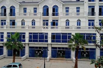 Quỹ căn shophouse Vinhomes Ocean Park dãy Ngọc Trai, mặt đường 52m sổ đỏ vĩnh viễn, thông tin chuẩn