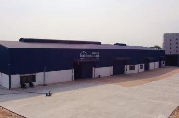 Cần cho thuê kho xưởng ngay trung tâm Thuận An - 3000m2 - 0336336499