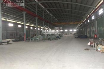 Cho thuê nhà xưởng TDT 5000m2, MT Tỉnh lộ, Lương Bình, Bến Lức, Long An